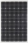 Powertech 145W 12V Mono-crystalline Solar Panel